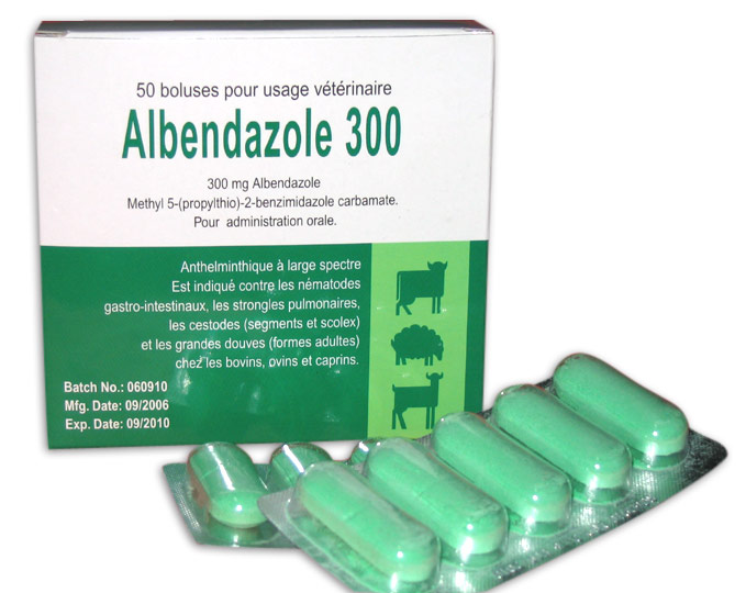 Pediatric Dose Of Albenza For Pinworms