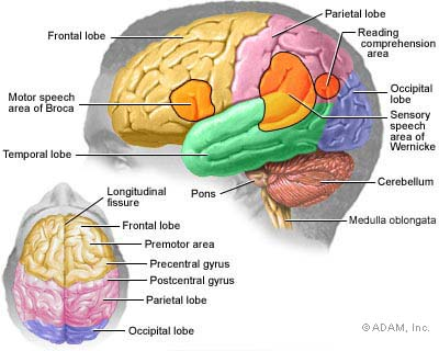 symptoms of brain tumor in adults