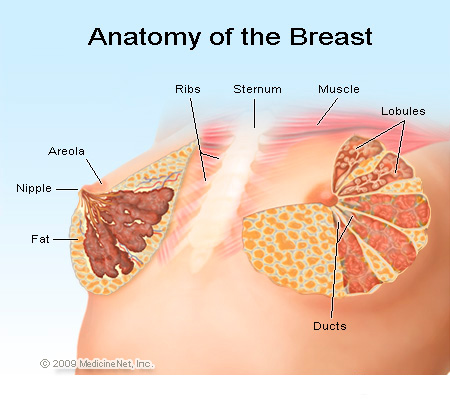 Breast Cancer Causes, Symptoms, Treatment - What Are