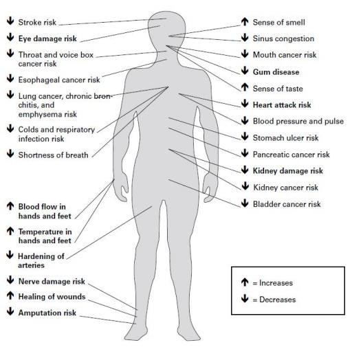 advantage of smoking Smoking causes illness and death, among other disadvantages it is the most preventable lifestyle factor affecting human health smoking harms every organ.