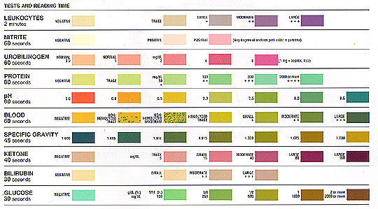 Urinalysis Results For Generic Levitra