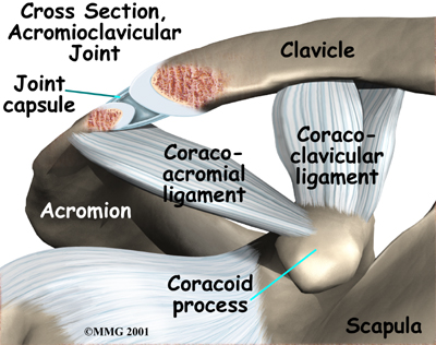 Acromioclavicular Joint Causes Symptoms Treatment